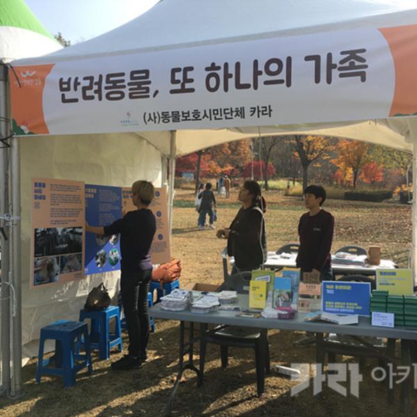 강동구청 반려동물 걷기대회 부스 참여 [사진그림류]