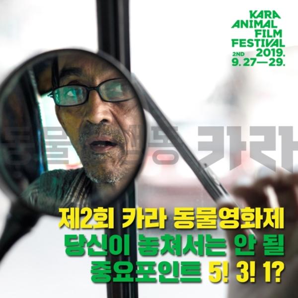 [카드뉴스]중요포인트531 [사진그림류]