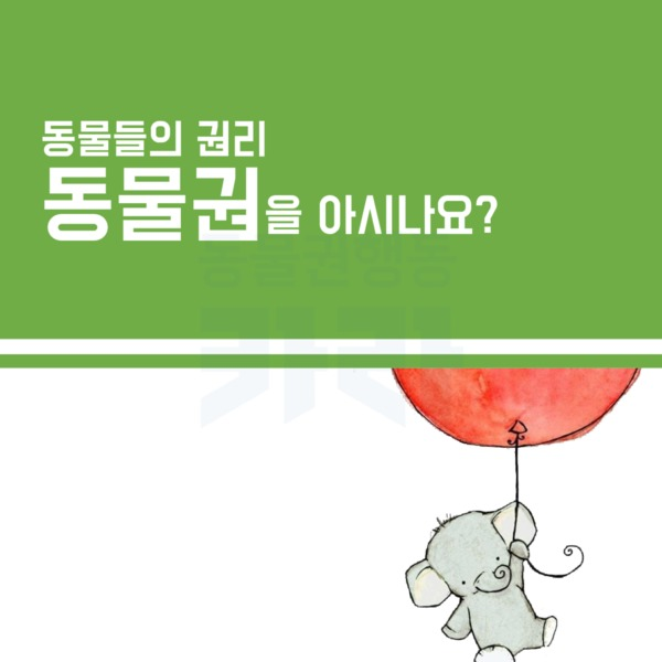 (카드 뉴스) 헌법에 동물권 [문서류]