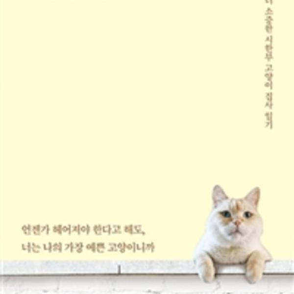 길고양이로 사는 게 더 행복했을까 : 하루하루가 더 소중한 시한부 고양이 집사 일기 [동물도서]