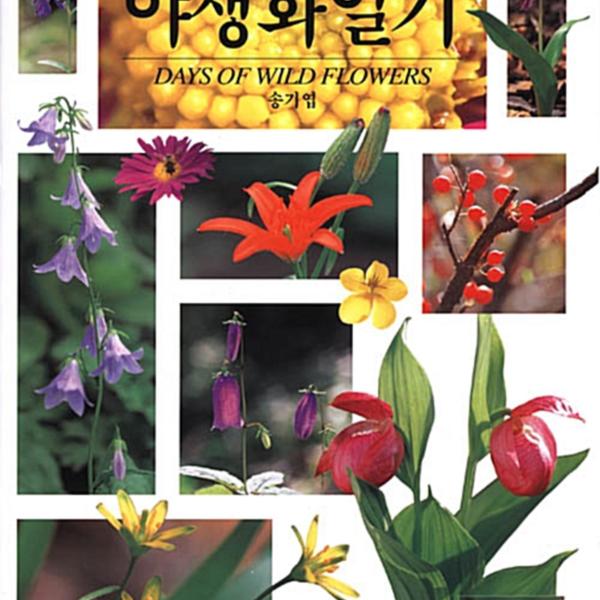 (봄·여름·가을·겨울)야생화일기 = Days of wild flowers [동물도서]