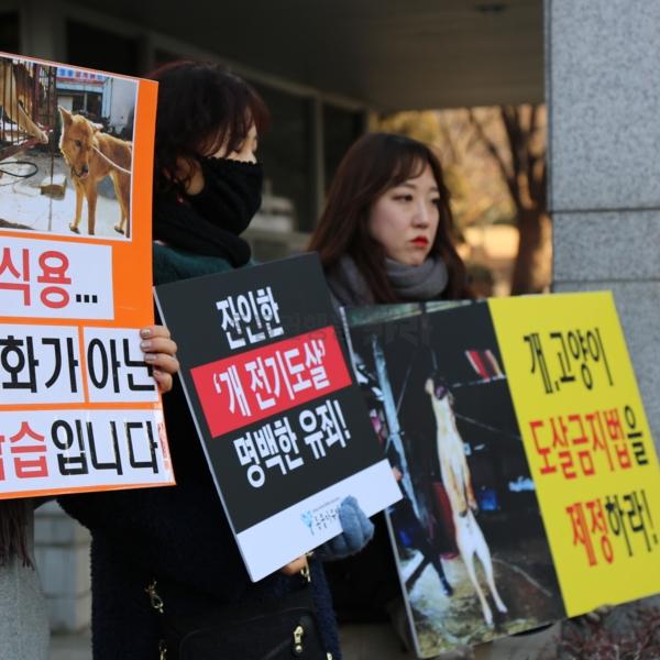 육견협회대응 침묵피케팅 [사진그림류]