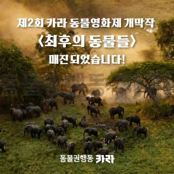 [카드뉴스]최후의동물들매진 [사진그림류]