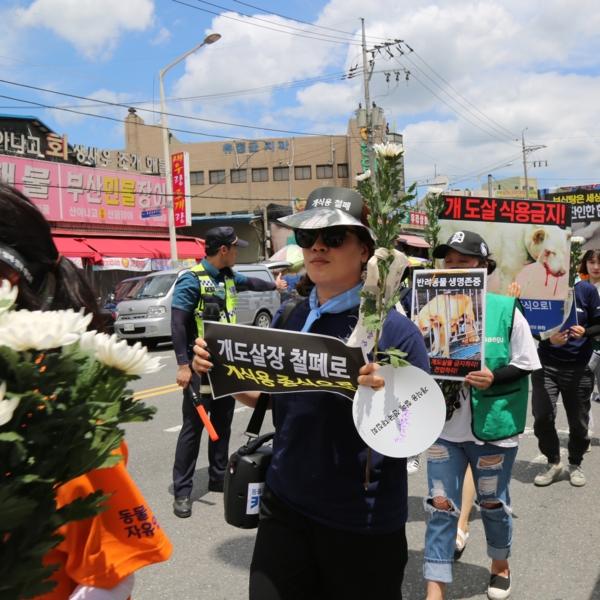 2차 개식용 철폐 전국 대집회(대구) [사진그림류]