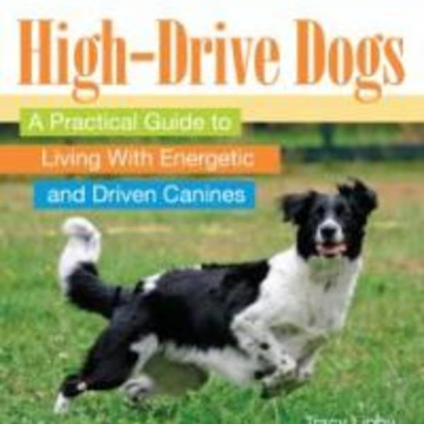 High-Energy Dogs : A Practical Guide to Living with Energetic and Driven Canines [동물도서]