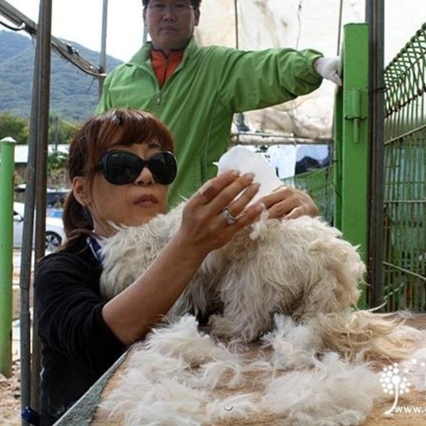 [2011.01.05] 소프라노 조수미(KARA 명예이사)님과 보호소 봉사활동