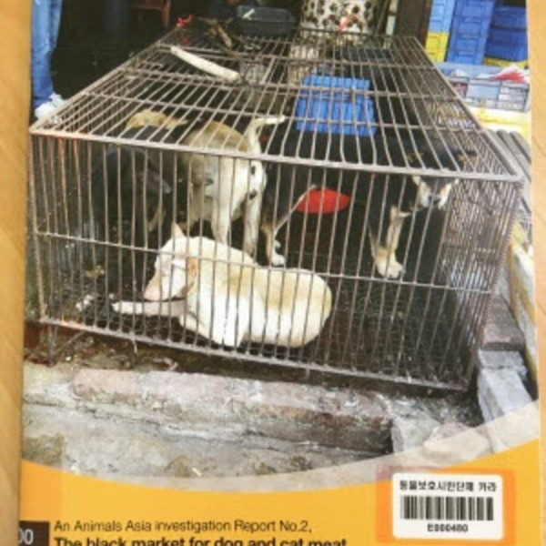 (The) black market for dog and cat meat in China : Media reports 2001-2005  [동물도서]