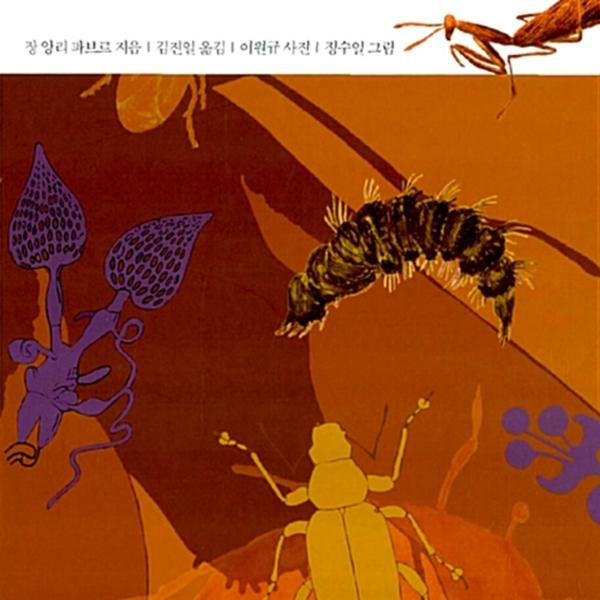 파브르 곤충기.3 [동물도서]