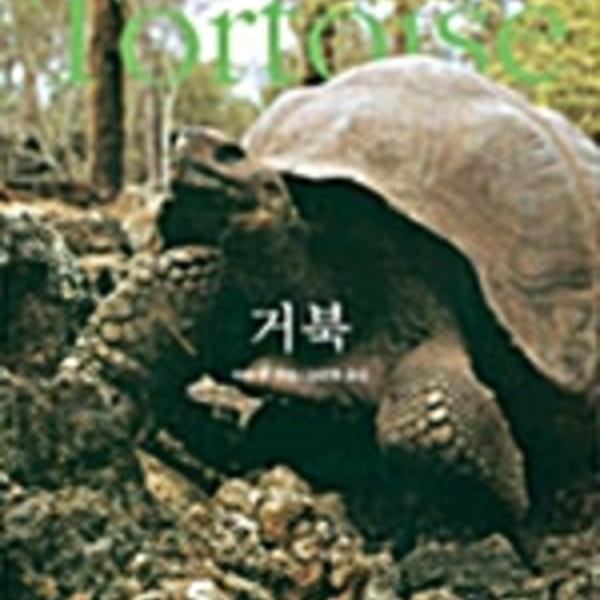 거북 [동물도서]