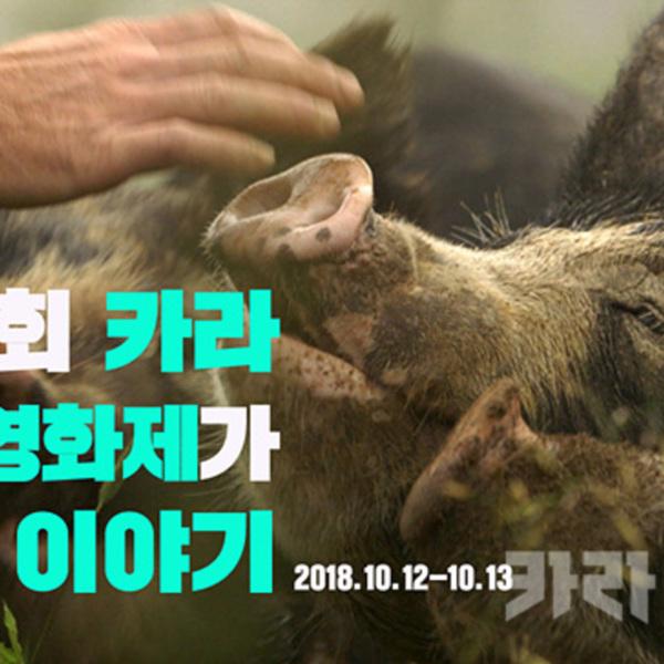 제1회 카라 동물영화제 후기 이미지 [사진그림류]