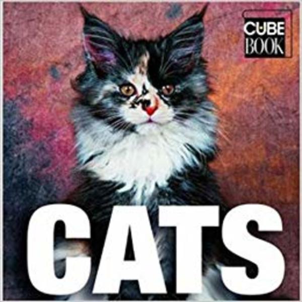 Cats [동물도서]