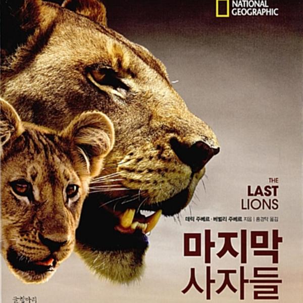 마지막 사자들 [동물도서]