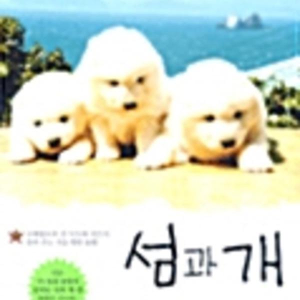 섬과 개 [동물도서]