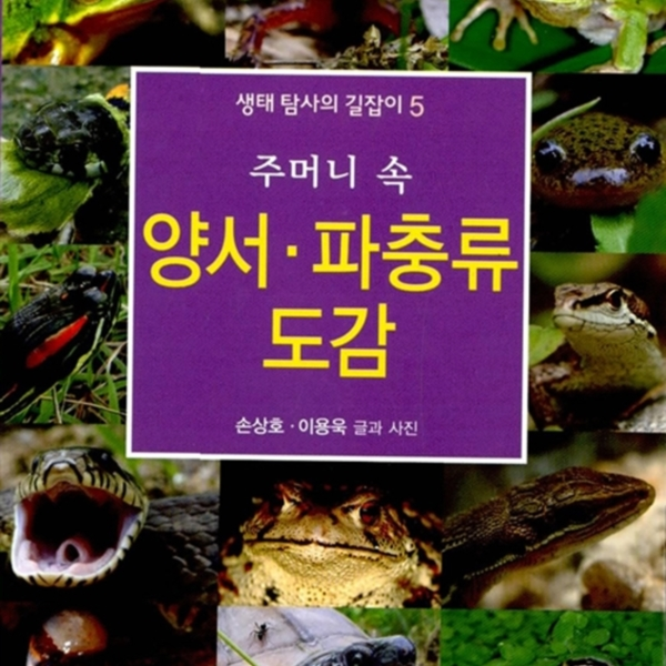 (주머니 속) 양서·파충류 도감 [동물도서]