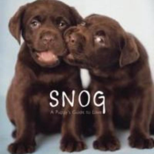 Snog : A Puppy´s Guide to Love [동물도서]