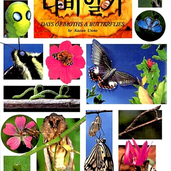 (봄·여름·가을·겨울)나비일기 [동물도서]