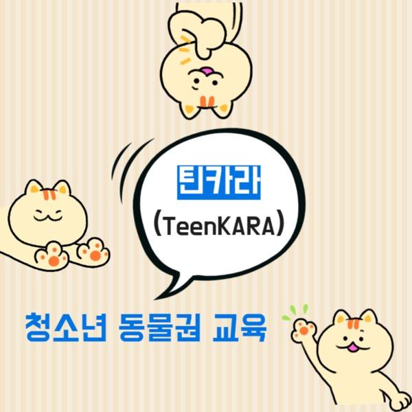 [카드뉴스]더배움 틴카라 [사진그림류]