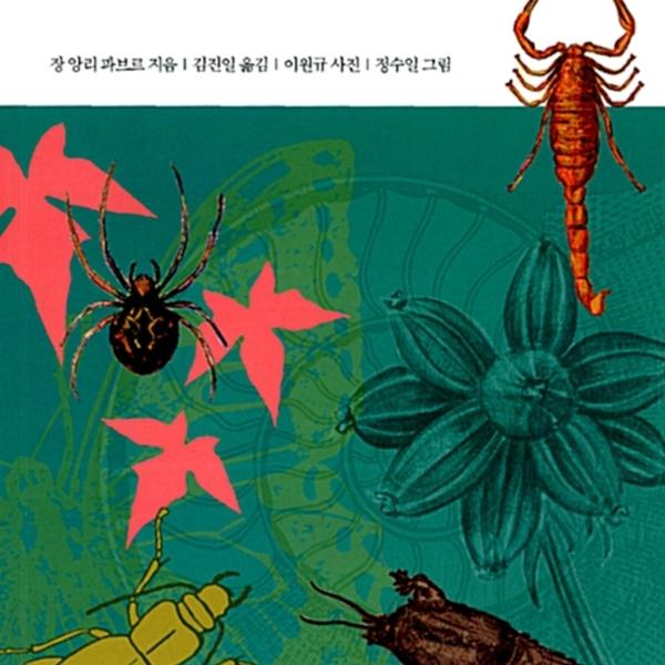 파브르 곤충기.9 [동물도서]