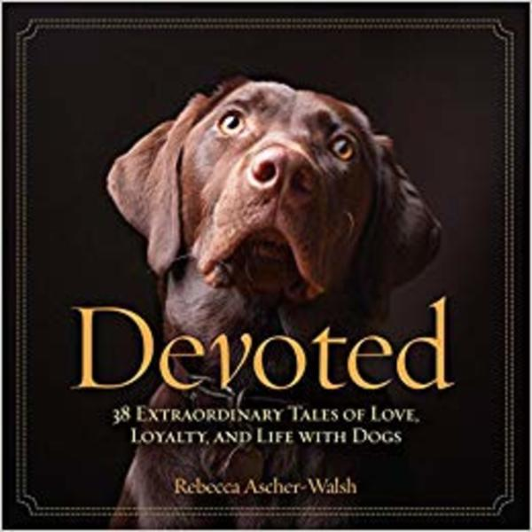 Devoted : 38 Extraordinary Tales of Love, Loyalty, and Life With Dogs [동물도서]